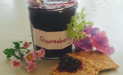 Chef Phil's Gooseberry Jam