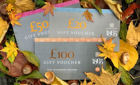 Last Chance Vouchers – use them or lose them!